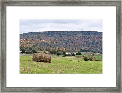 Autumn Bales Framed Print by Jan Amiss Photography