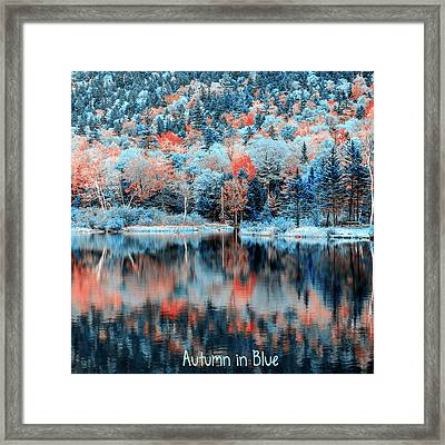 Autumn Beauty In Blue Framed Print by Black Brook Photography