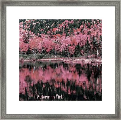Autumn Beauty In Pink Framed Print by Black Brook Photography