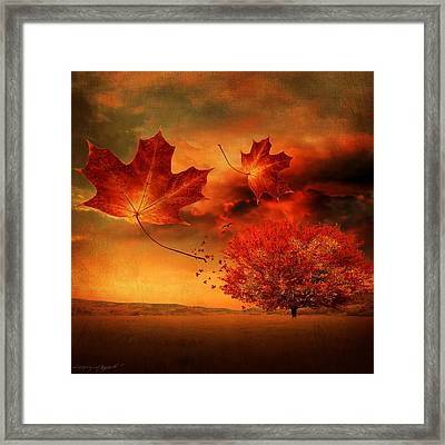 Autumn Blaze Framed Print by Lourry Legarde