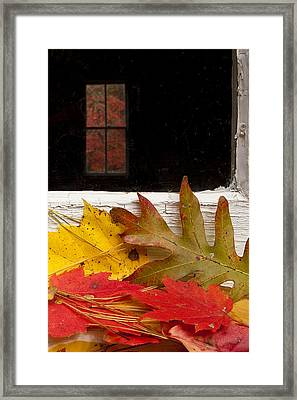 Autumn Colors Framed Print by Andrew Soundarajan