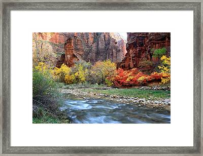Autumn Colors At Sinawava Temple  Framed Print by Pierre Leclerc Photography