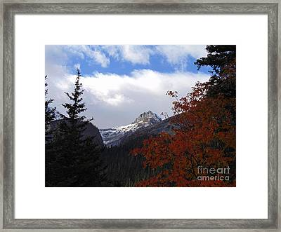 Autumn Colors Framed Print by David A James