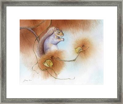 Autumn Come Softly Squirrel Framed Print by Tracy Herrmann