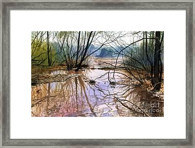 Autumn Creek Framed Print by Sergey Zhiboedov