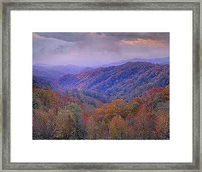 Autumn Deciduous Forest Great Smoky Framed Print by Tim Fitzharris