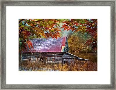 Autumn Embrace Framed Print by Debra and Dave Vanderlaan