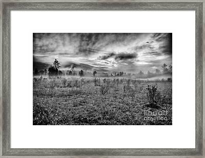 Autumn Fall Colors 10 Bw Framed Print by Dan Carmichael