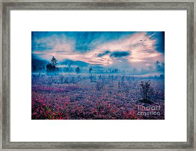Autumn Fall Colors 10 Framed Print by Dan Carmichael
