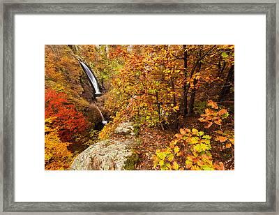 Autumn Falls Framed Print by Evgeni Dinev