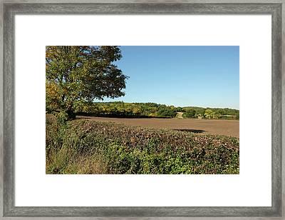 Autumn Farmland Framed Print by Mark Severn