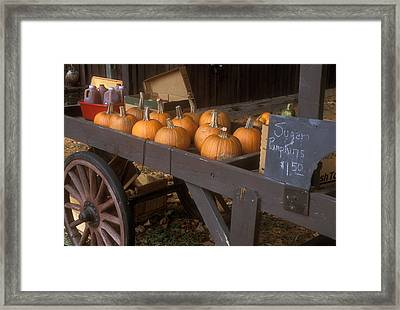 Autumn Farmstand Framed Print by John Burk