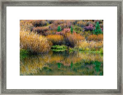 Autumn Fishing Hole Framed Print by TL  Mair