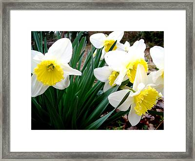 Autumn Flowers II Framed Print by Fareeha Khawaja