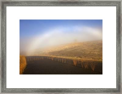 Autumn Fog Bow Framed Print by Mike  Dawson