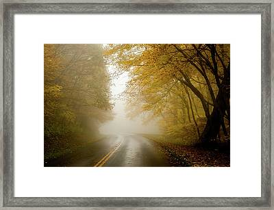 Autumn Fog Drive North Carolina Framed Print by Terry DeLuco