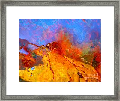 Autumn Fusion 1 Framed Print by Jeff Breiman