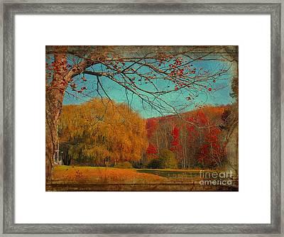 Autumn Glory Framed Print by Snook R