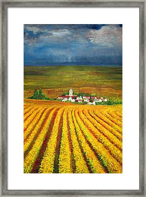 Autumn Harvest Framed Print by Michael Durst