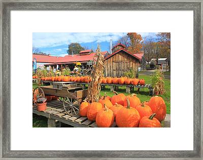Autumn Harvest Pumpkins And Sugar House Framed Print by John Burk