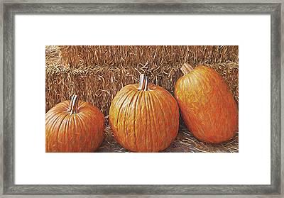 Autumn Harvest Framed Print by Steve Ohlsen