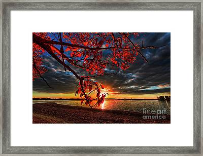 Autumn Illumination Framed Print by Ian McGregor
