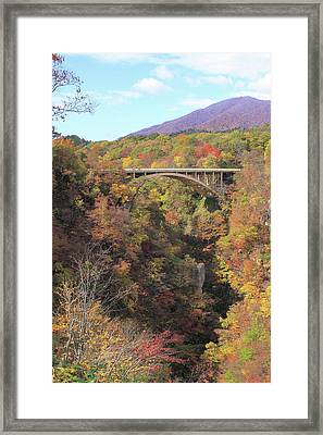 Autumn In Colors Framed Print by Koichi Watanabe