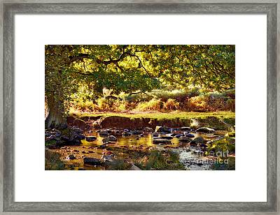 Autumn In The Lin Valley Framed Print by John Edwards