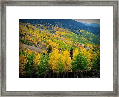 Autumn In The Rockies Framed Print by Aaron Burrows