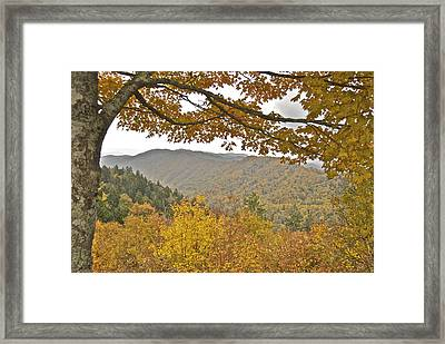 Autumn In The Smokies Framed Print by Michael Peychich