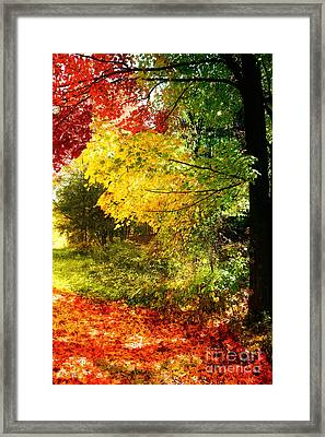 Autumn In Vermont Framed Print by Mindy Sommers