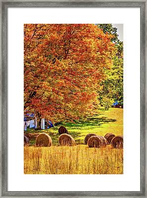 Autumn In West Virginia Framed Print by Steve Harrington