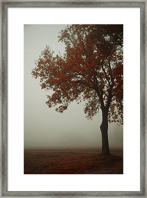 Autumn Framed Print by Joanna Jankowska