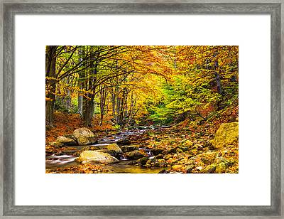 Autumn Landscape Framed Print by Evgeni Dinev