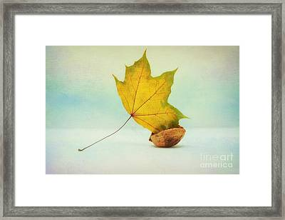 Autumn Leaf With Still Life Framed Print by SK Pfphotography