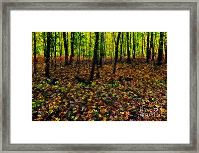 Autumn Leaves And Forest Framed Print by Robert Gaines