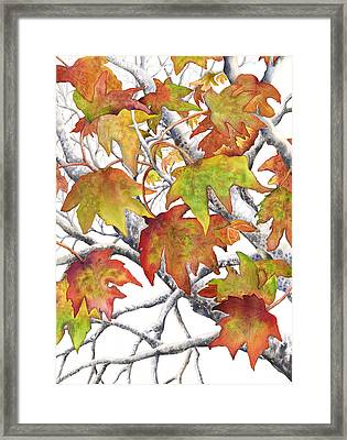 Autumn Leaves Framed Print by Autumn Leaves