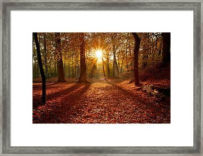 Autumn Magic Framed Print by Roeselien Raimond