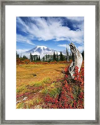 Autumn Majesty Framed Print by Mike  Dawson
