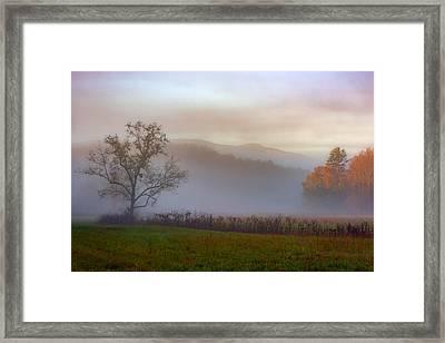 Autumn Mist Framed Print by Rick Berk