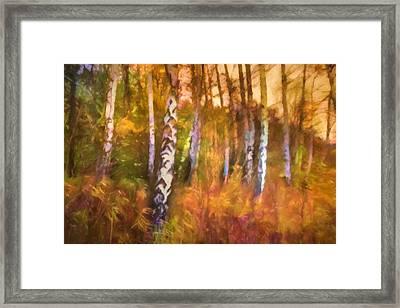 Autumn Mood Framed Print by Lutz Baar