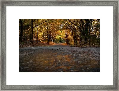 Autumn Mornings Framed Print by Sue OConnor