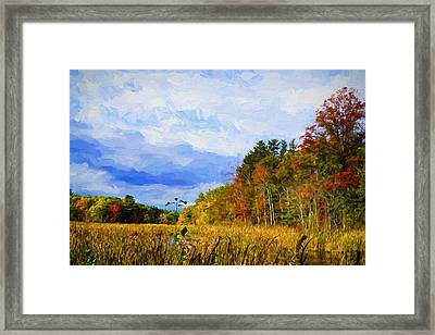Autumn Nature Framed Print by Lilia D