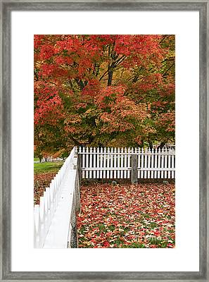 Autumn New England Framed Print by John Greim