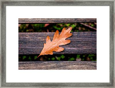 Autumn Oakleaf On Bench Framed Print by Tom Mc Nemar