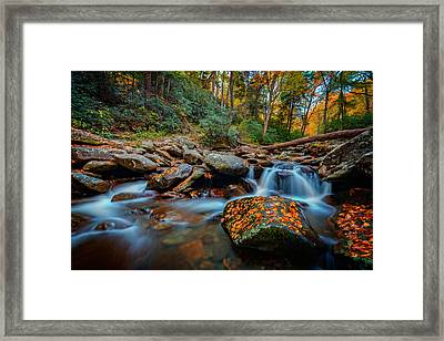 Autumn On The Chimney Tops Trail Framed Print by Rick Berk