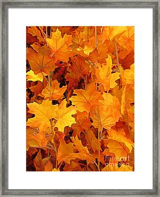 Autumn Orange Framed Print by John Malone