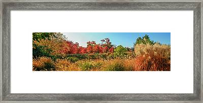 Autumn Panorama  Framed Print by Garry McMichael