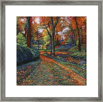 Autumn Park Framed Print by David Lloyd Glover