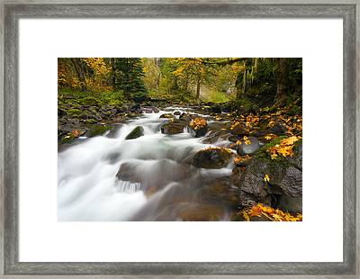 Autumn Passages Framed Print by Mike  Dawson